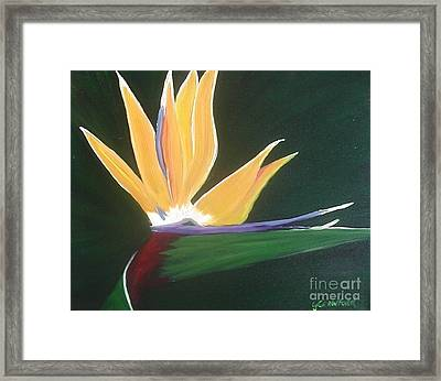 Passion Unfolding 3 Framed Print by Lori Jacobus-Crawford