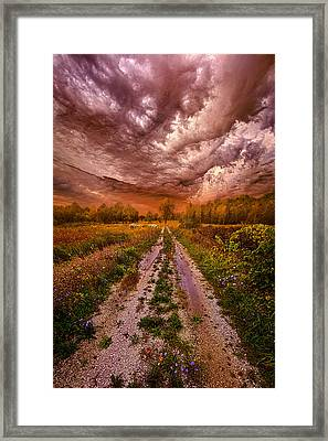 Passion Within Chaos Framed Print