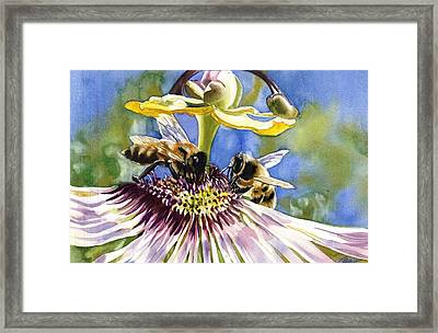 Passionate Bee Framed Print
