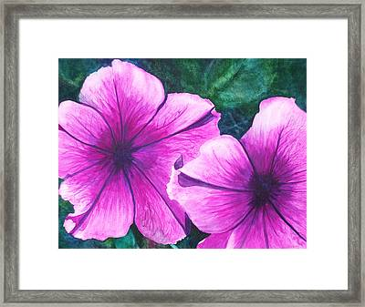 Passionate Petunias Framed Print by Ally Benbrook