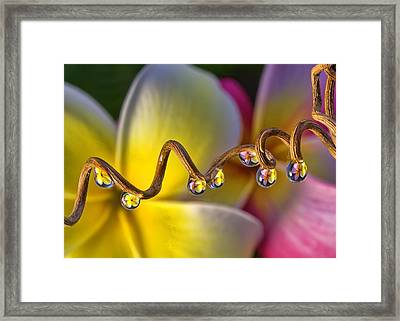 Past And Present Framed Print by Maui Up Close