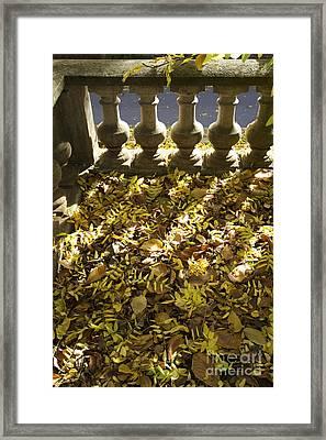 Past Balustrade. Framed Print by Bernard Jaubert