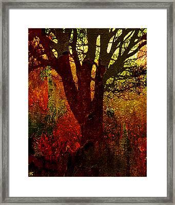 Past Life Framed Print by Ken Walker