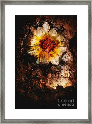 Past Life Resurrection Framed Print