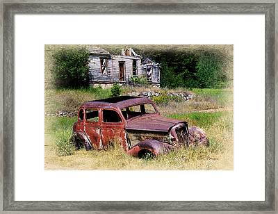 Past Their Prime Framed Print