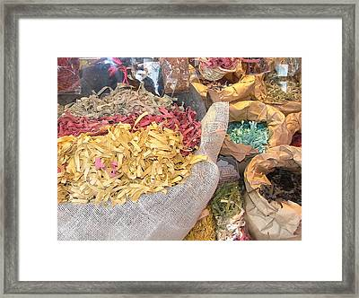 Pasta Pasta Framed Print by Mindy Newman