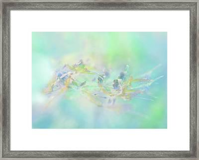 Pastel Botany Framed Print