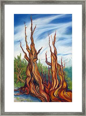 Framed Print featuring the painting Pastel Bristlecone by Pat Crowther