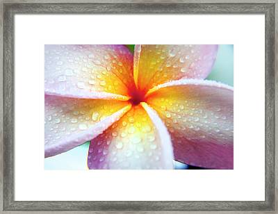 Pastel Droplets Framed Print