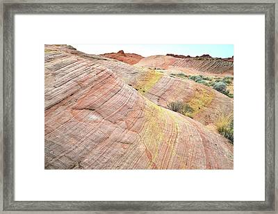 Framed Print featuring the photograph Pastel Dunes In Valley Of Fire by Ray Mathis