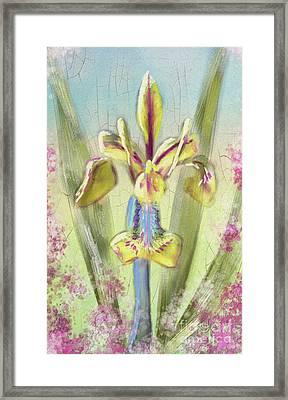 Framed Print featuring the digital art Pastel Iris by Lois Bryan