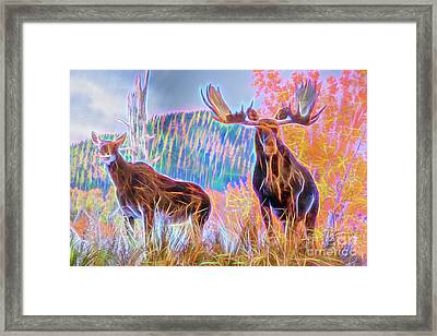 Framed Print featuring the photograph Pastel Moose Couple by Ray Shiu