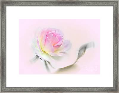 Pastel Passion Framed Print by Kaye Menner