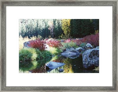 Pastel Perfection IIi Framed Print