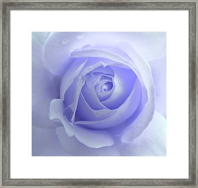 Pastel Purple Rose Flower Framed Print by Jennie Marie Schell