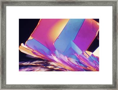 Pastel Relief Framed Print