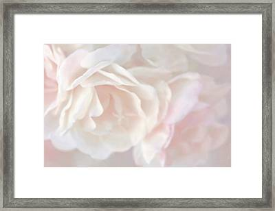 Pastel Rose Flowers Framed Print