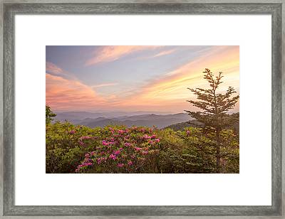 Pastel Sky Framed Print by Doug McPherson