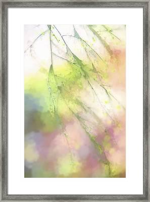 Pastel Spring Whispers Framed Print