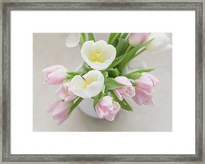 Framed Print featuring the photograph Pastel Tulips by Kim Hojnacki