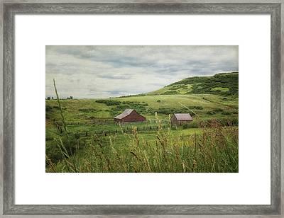 Pastoral Framed Print by Alison Sherrow I AgedPage