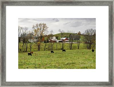 Framed Print featuring the photograph Pastoral by Larry Ricker