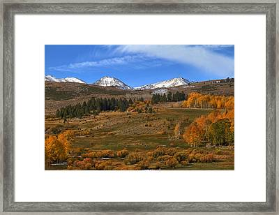 Pastoral View Framed Print by Donna Kennedy