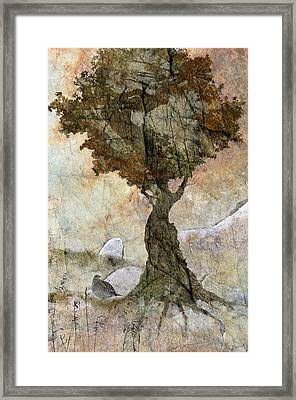 Pastoria - Year Of The Dragon Framed Print