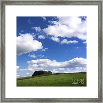 Pasture In Auvergne Framed Print by Bernard Jaubert