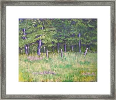 Pasture Paradise Framed Print