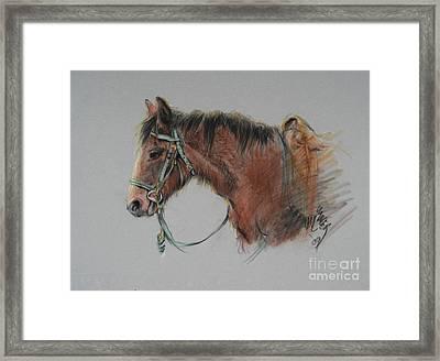 Pat Winter At The Morgan Horse Ranch Prns Framed Print by Paul Miller