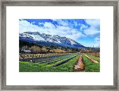 Dreamlike Argentine Patagonia Framed Print