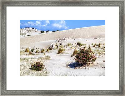 Patara Beach - Turkey Framed Print by Joana Kruse