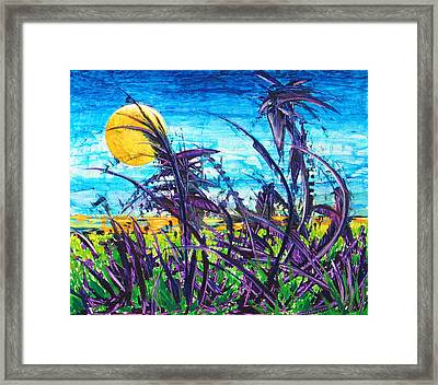 Patch Of Field Grass Framed Print by Rollin Kocsis