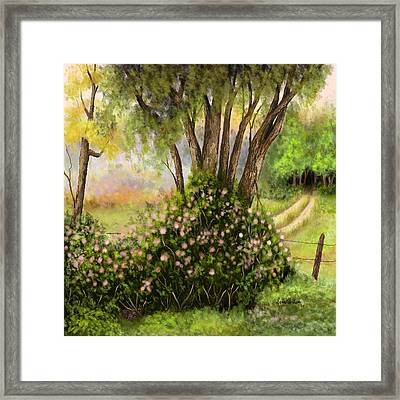 Framed Print featuring the painting Patches Of Beauty by Sena Wilson