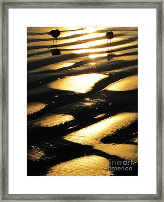 Patchwork Daytona Beach And Seagulls Framed Print