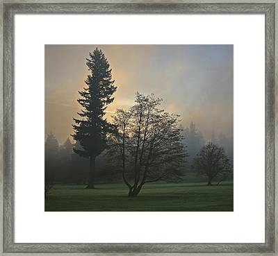 Patchy Morning Fog Framed Print