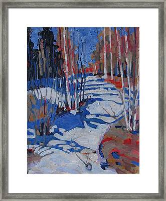 Path Behind Mowat Lodge Framed Print by Phil Chadwick