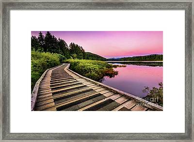Path By The Lake Framed Print by Rod Jellison