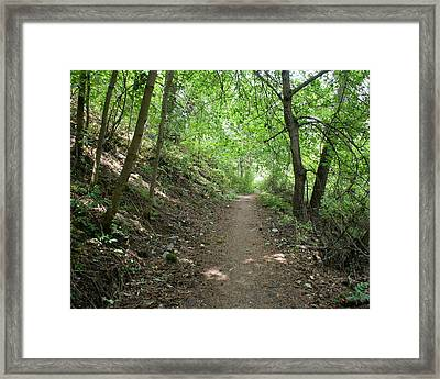 Framed Print featuring the photograph Path By The River by Ben Upham III