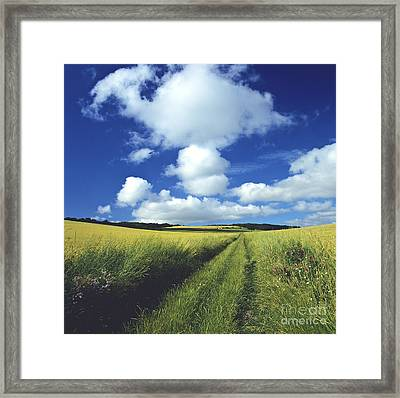 Path In A Countryside Framed Print by Bernard Jaubert