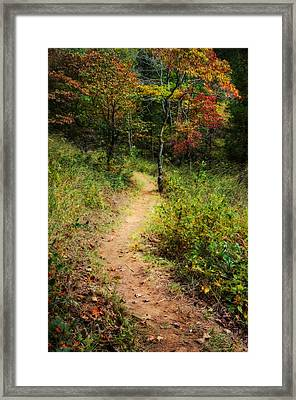 Path In The Prairie Framed Print by Diana Boyd