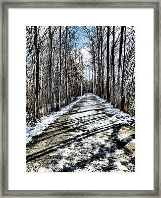 Path In Winter Framed Print