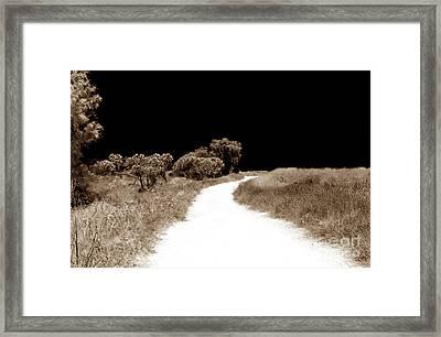 Path Into The Dark Framed Print by John Rizzuto