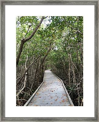 Path Less Traveled  Framed Print by Joanne Parks