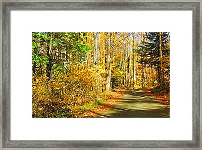 Path Of Gold Framed Print by HH Photography of Florida