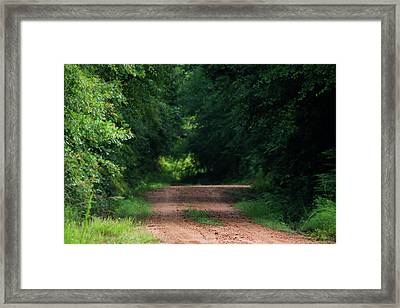 Framed Print featuring the photograph Path Of Light Horizontal by Shelby Young