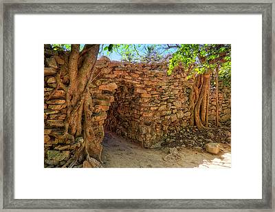 Framed Print featuring the photograph Path Of The Ancients - Mayan Ruins - Mexico by Jason Politte