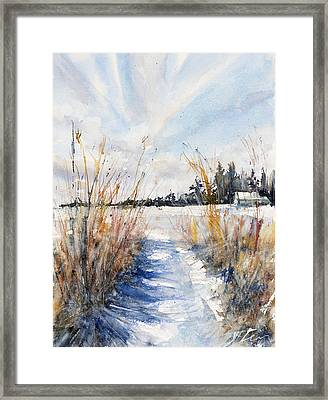 Path Shadows In The Way Back Framed Print