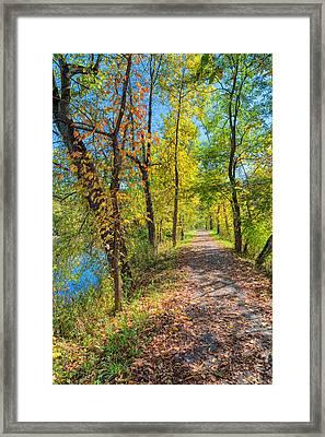 Path Through Fall Framed Print